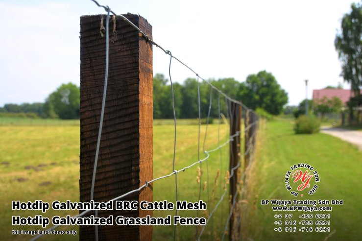 BP Wijaya Security Fence Manufacturer Malaysia Hotdip Galvanized BRC Cattle Mesh Hotdip Galvanized Grassland Fence Iron Field Fence Horse Cow Animals Farm Fence with Mesh Hinge Joint Knot Field Fence Mesh A14