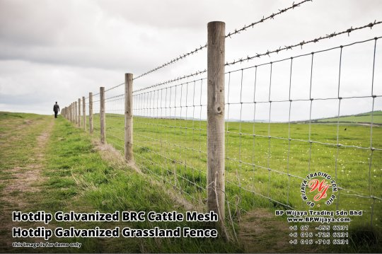 BP Wijaya Security Fence Manufacturer Malaysia Hotdip Galvanized BRC Cattle Mesh Hotdip Galvanized Grassland Fence Iron Field Fence Horse Cow Animals Farm Fence with Mesh Hinge Joint Knot Field Fence Mesh A15