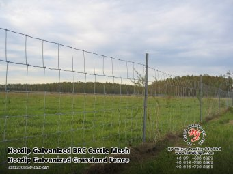 BP Wijaya Security Fence Manufacturer Malaysia Hotdip Galvanized BRC Cattle Mesh Hotdip Galvanized Grassland Fence Iron Field Fence Horse Cow Animals Farm Fence with Mesh Hinge Joint Knot Field Fence Mesh A27